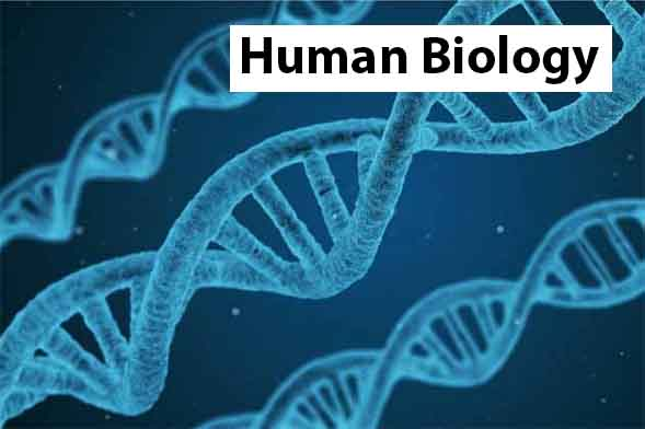 Human Biology Year 12 – ATAR April Holiday Revision